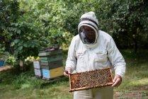 Imker begutachtet Bienenstock im Bienengarten — Stockfoto