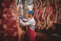 Açougueiro pendurado carcaças de carne vermelha na sala de armazenamento no açougue — Fotografia de Stock