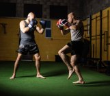 Вид сбоку двух тайских боксеров, занимающихся в тренажерном зале — стоковое фото