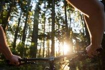 Руки велосипедиста-мужчины, катающегося в лесу на солнечном свете — стоковое фото