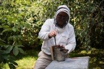Imker raucht Bienen aus Bienenstock im Bienengarten — Stockfoto