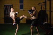 Вид сбоку двух тайских боксеров, дерущихся в спортзале — стоковое фото
