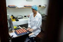 Жіночий співробітників, що працюють на комп'ютері яйце заводі — стокове фото