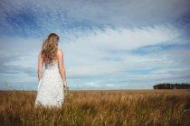Вид сзади женщины, стоящей на пшеничном поле в солнечный день — стоковое фото