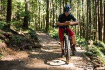 Мужчина-велосипедист, использующий мобильный телефон в лесу при солнечном свете — стоковое фото