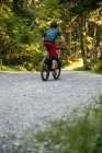 Rear view of male cyclist cycling in forest on a sunny day — Stock Photo