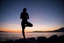 Back view of Woman practicing yoga on rock at dusk — Stock Photo