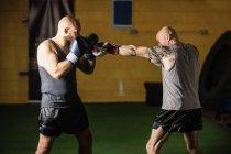 Вид сбоку двух боксеров, занимающихся в тренажерном зале — стоковое фото