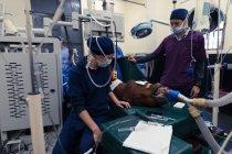 Женщина-хирург осматривает лошадь в операционной в больнице — стоковое фото