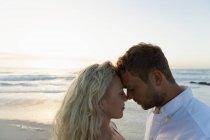 Боковой вид молодой влюбленной пары, смущающей друг друга, стоя на пляже. Они наслаждаются отпуском. — стоковое фото