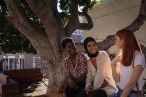Вид сбоку счастливых подруг смешанной расы, взаимодействующих друг с другом, сидя под деревом — стоковое фото