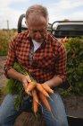 Вид спереди на старшего кавказского фермера, загружающего собранную морковь в автомобиль в солнечный день — стоковое фото