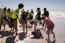 Вид на группу мультиэтнических волонтеров, убирающих пляж в солнечный день — стоковое фото
