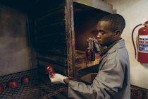 Вид сбоку на молодого афроамериканца, стоящего на живописной площадке, держащего в руках наружную половину красного кожаного мяча для крикета и спрей-пистолет в мастерской на заводе по производству мячей для крикета . — стоковое фото