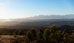 Wide view of an open natural landscape with trees in the foreground, distant mountains and sun setting on the horizon — Stock Photo