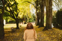 Rear view of woman walking in the park. — Stock Photo