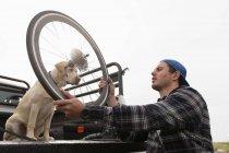 Вид збоку крупним планом молодого Кавказького людини в інвалідному візку приймаючи лежачий велосипед з задньої частини своєї машини, щоб зібрати його, тримаючи колесо зі своєю собакою дивляться — стокове фото