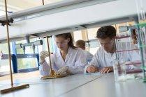 Estudiantes universitarios practicando experimento de química en el escritorio del laboratorio - foto de stock