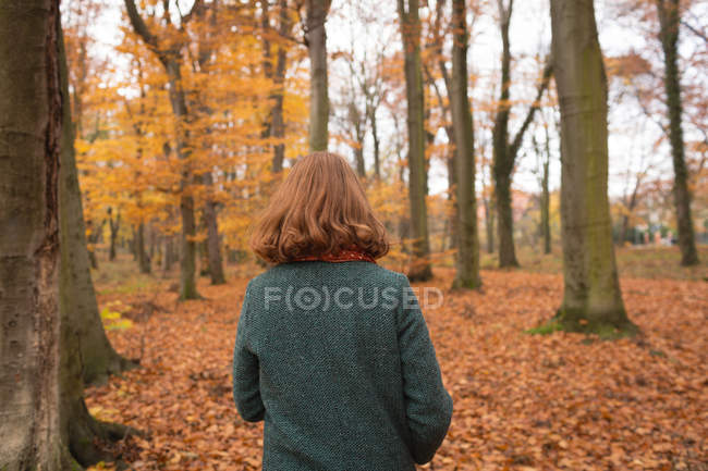 Rear view of woman walking alone in the park during autumn — Stock Photo