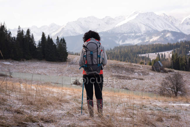 Rear view of woman standing with backpack and hiking pole during winter — Stock Photo