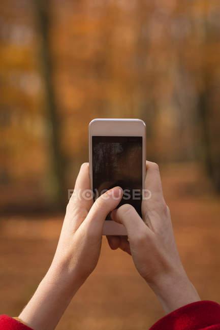 Женщина фотографируется с мобильным телефоном в парке — стоковое фото
