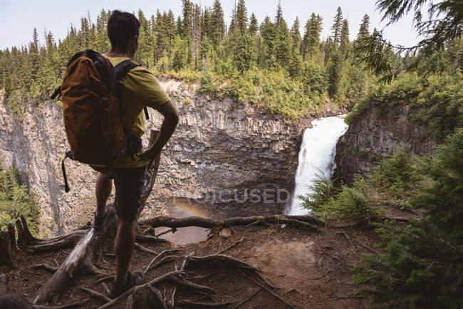 Vista posteriore dell'uomo che esamina cascata — Foto stock