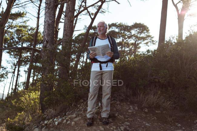Alpinista sênior com mapa na floresta, na zona rural de pé — Fotografia de Stock