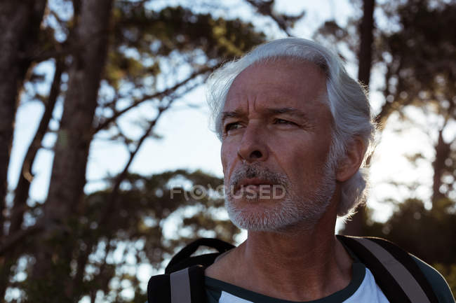 Thoughtful senior hiker standing with backpack in forest — Stock Photo