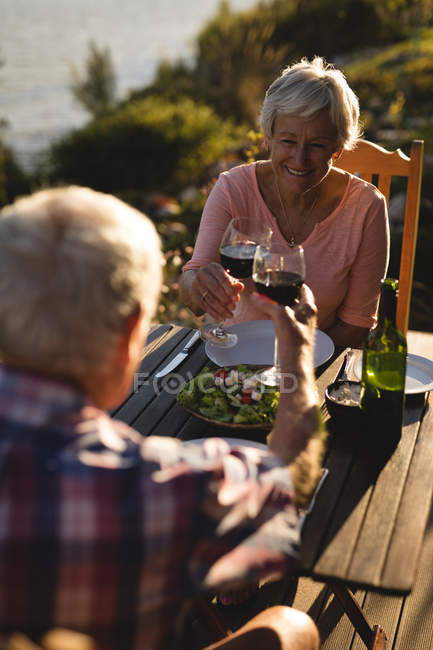 Happy senior couple toasting glasses of wine in the backyard — Stock Photo