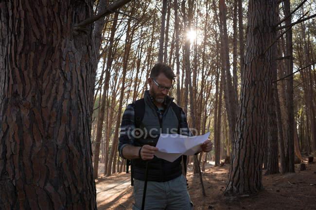 Uomo guardando la mappa nella foresta in una giornata di sole — Foto stock