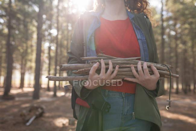 Sección media de la mujer sosteniendo palos de plantas en el bosque - foto de stock