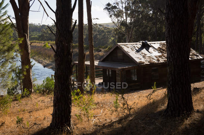 Log cabin near lakeside in forest on a sunny day — Stock Photo