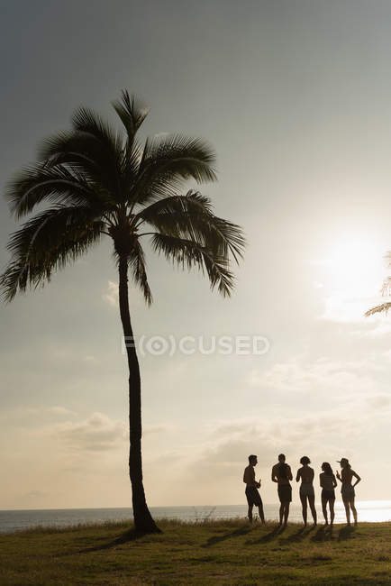 Group of friends having fun in the beach on a sunny day — Stock Photo