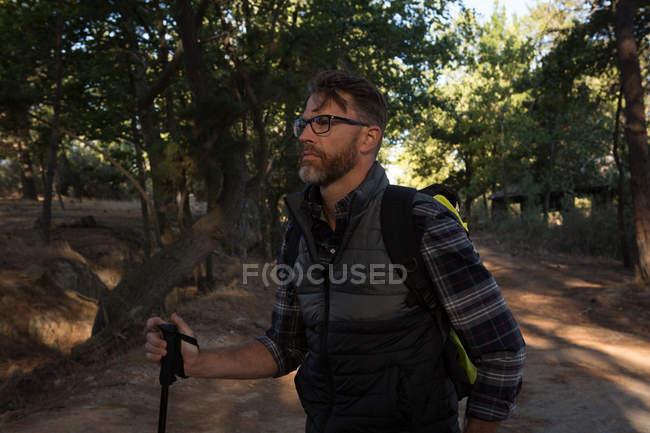 Pensiero di escursionista maschio in piedi nella strada forestale — Foto stock