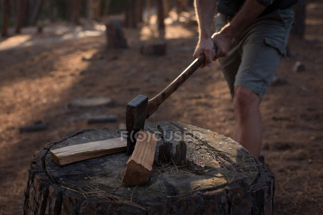 Mid section of lumberjack cutting firewood logs with axe in forest — Stock Photo