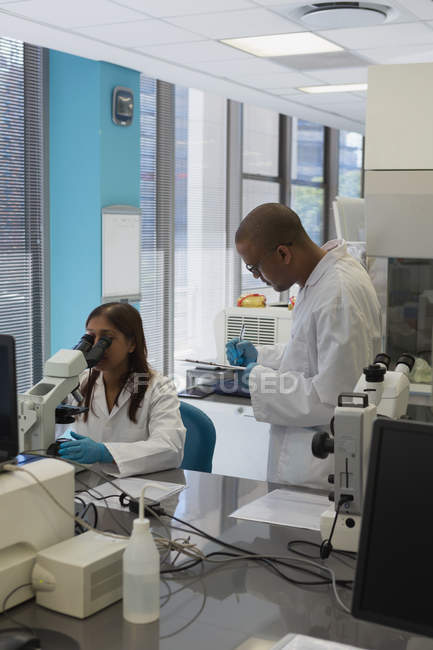 Two scientists doing experiment in lab — Stock Photo
