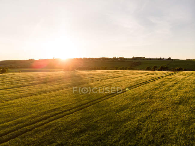 View of field during sunset, province of munster — Stock Photo