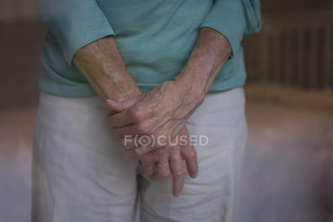 Mid section of senior woman standing at home — Stock Photo