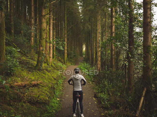 Visão traseira do ciclista na bicicleta na floresta exuberante — Fotografia de Stock