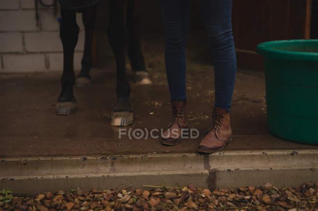 Unterteil des Mädchens mit Pferd auf der Ranch — Stockfoto