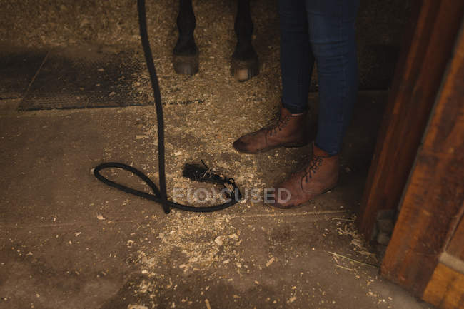 Unterteil von Mädchen mit Pferd auf der Ranch — Stockfoto
