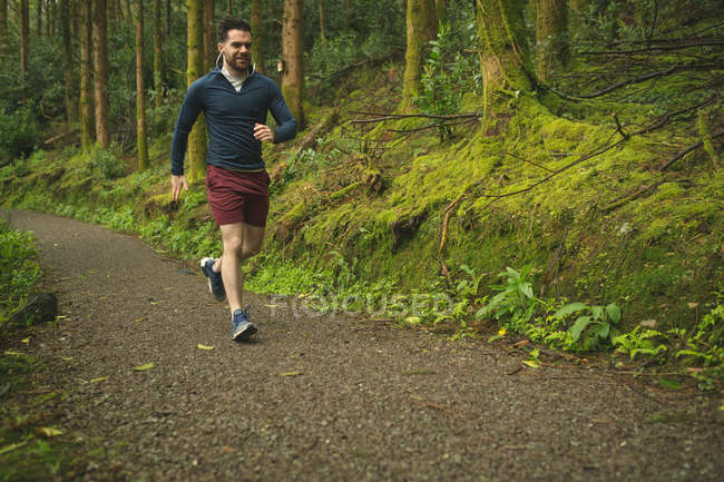 Fit man jogging in lush forest — Stock Photo