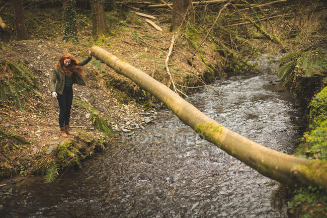 Schöne weibliche Wanderer, Blick auf den seichten Fluss im Wald — Stockfoto