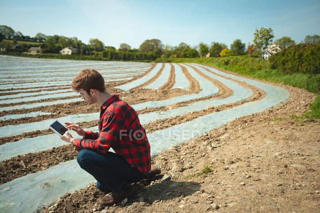 Homem usando tablet digital em campo em um dia ensolarado — Fotografia de Stock