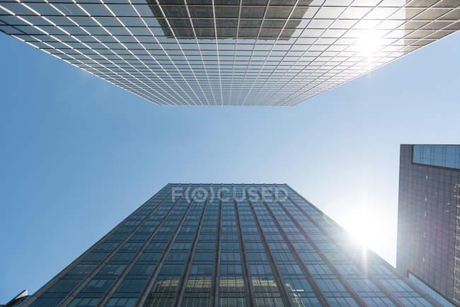 Низький кут зору сучасних будівель міста сонячний день — стокове фото