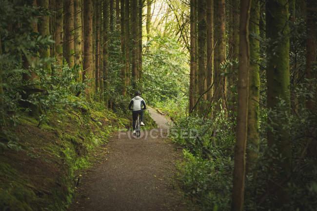 Vue arrière du cycliste à vélo à travers une forêt luxuriante — Photo de stock