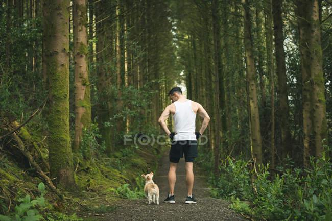 Вид сзади человека, стоящего со своей собакой в пышном лесу — стоковое фото