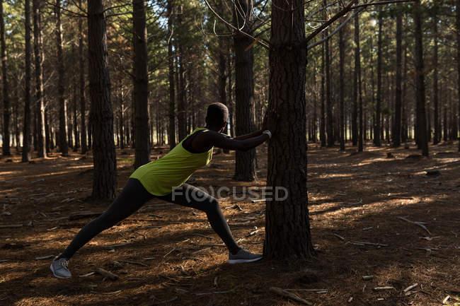 Решительная спортсменка, работающая в лесу — стоковое фото