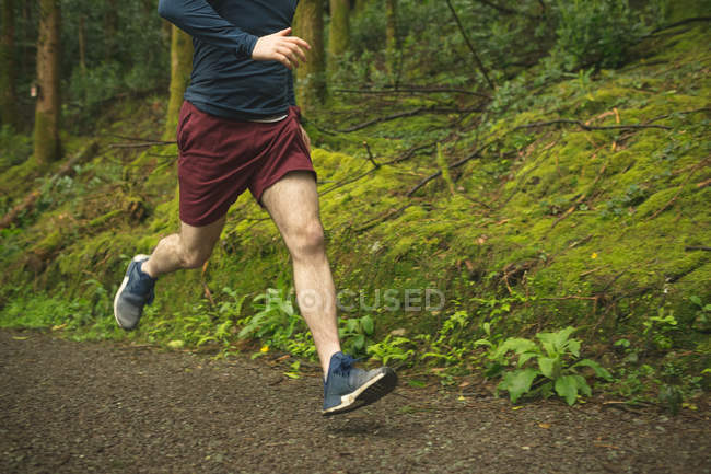 Sección baja del hombre corriendo en exuberante bosque - foto de stock