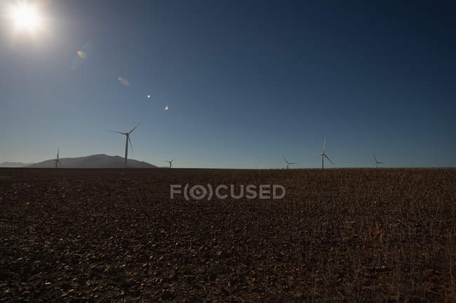 Wind mills at a wind farm during daytime — Stock Photo